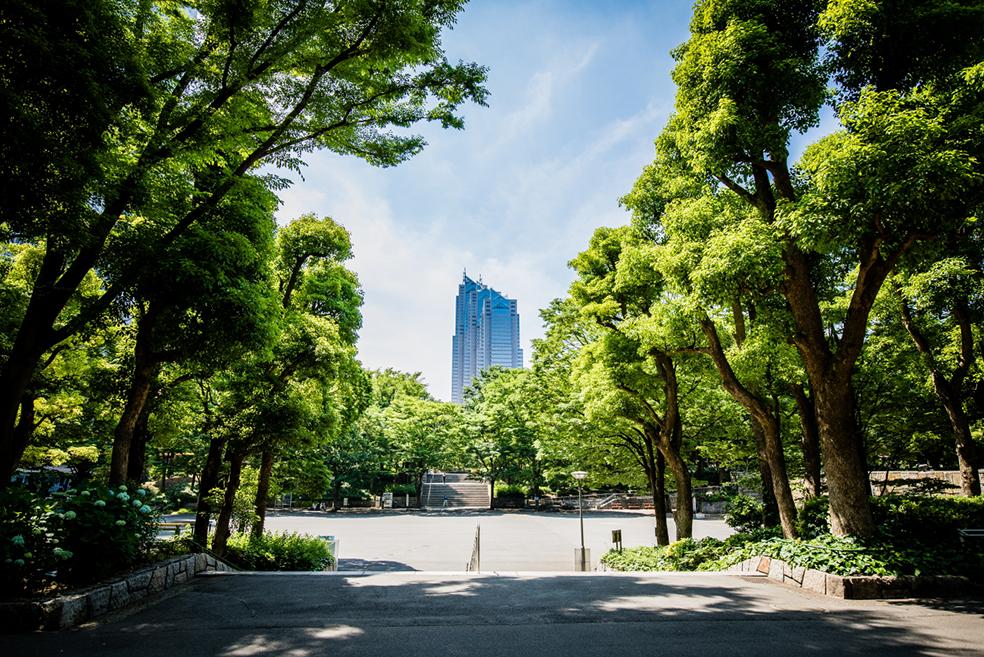 アンドバリュー株式会社新宿パークタワー支店の概観